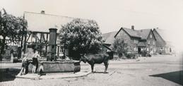 Historischer Dorfplatz